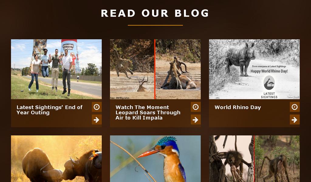 Lastest - Blog