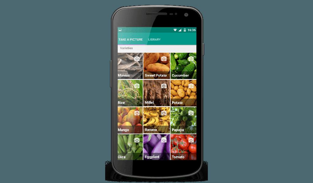 Peat - Phone 1