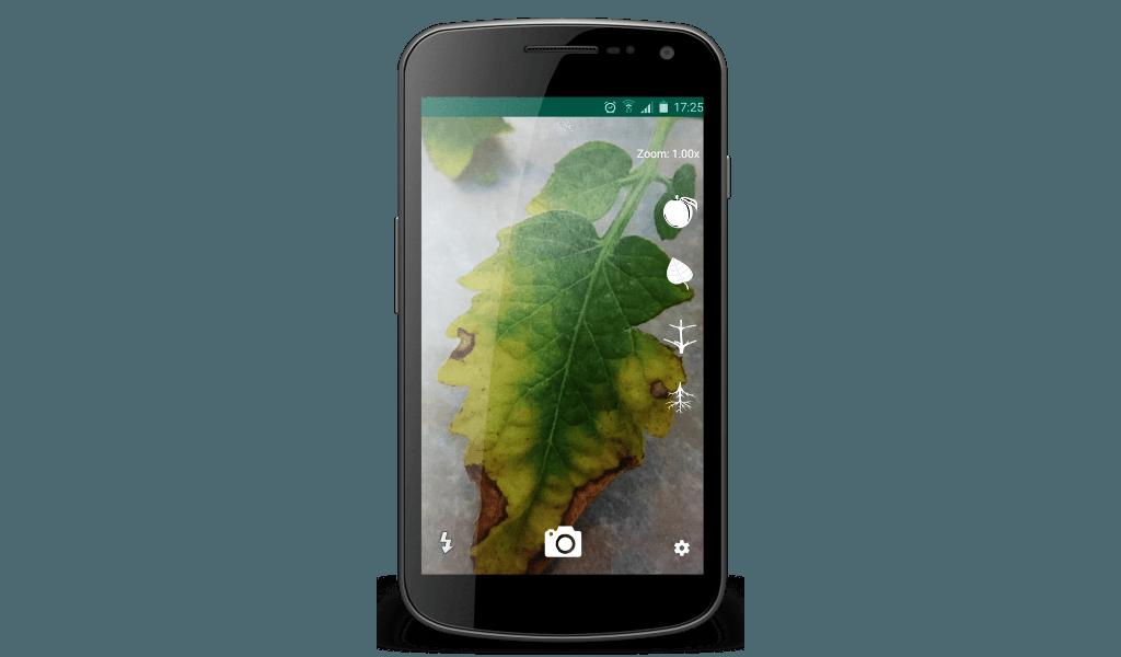 Peat - Phone 2
