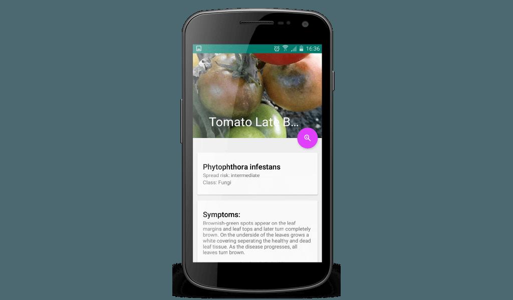 Peat - Phone 4